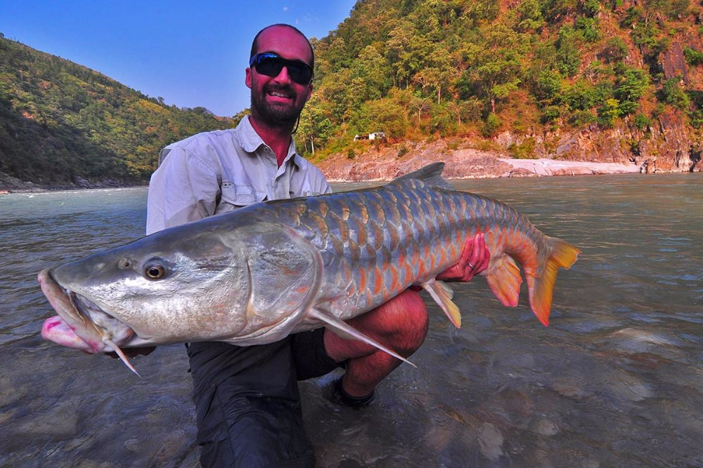 In search of the Himalyan Golden Mahseer
