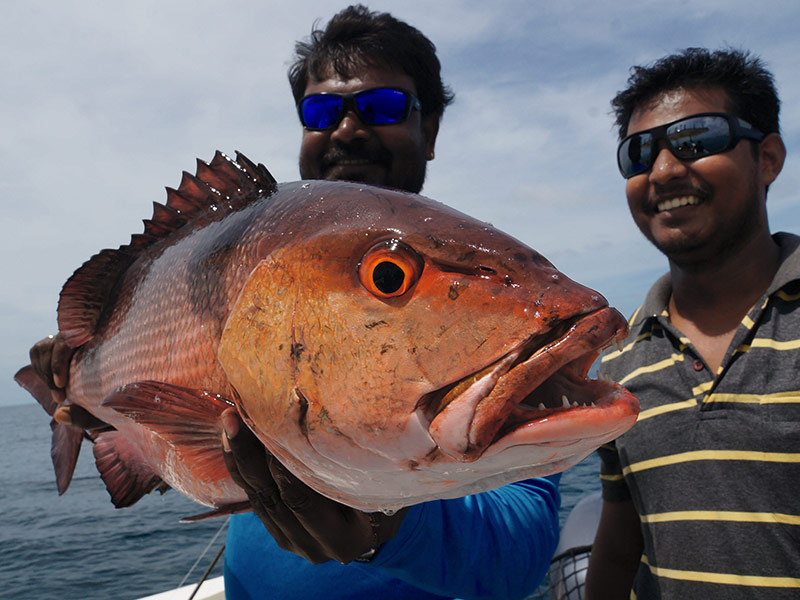 First timers, Fishing Legends and a Cyclone